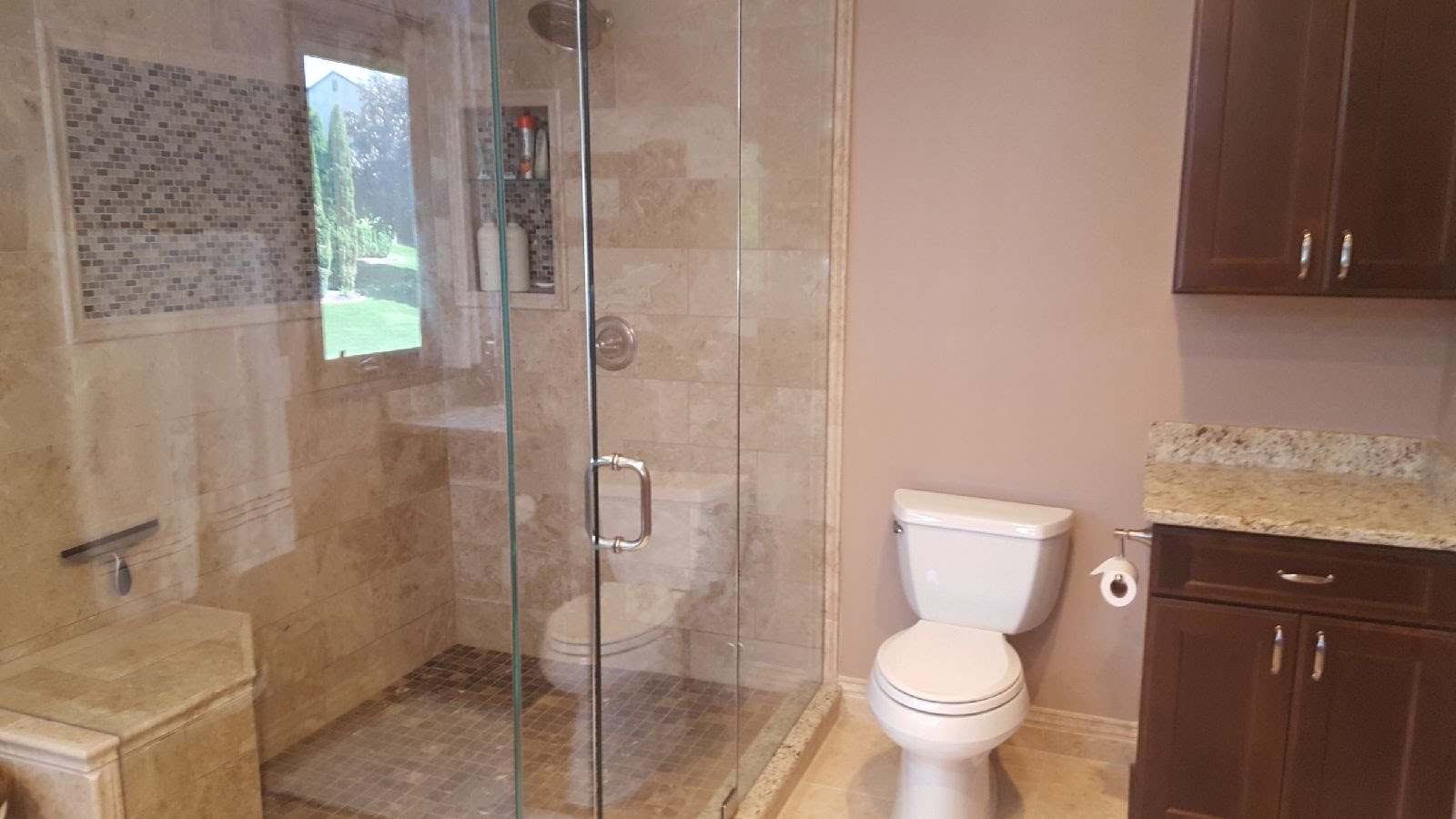 Clean Shower Glass and Toilet area
